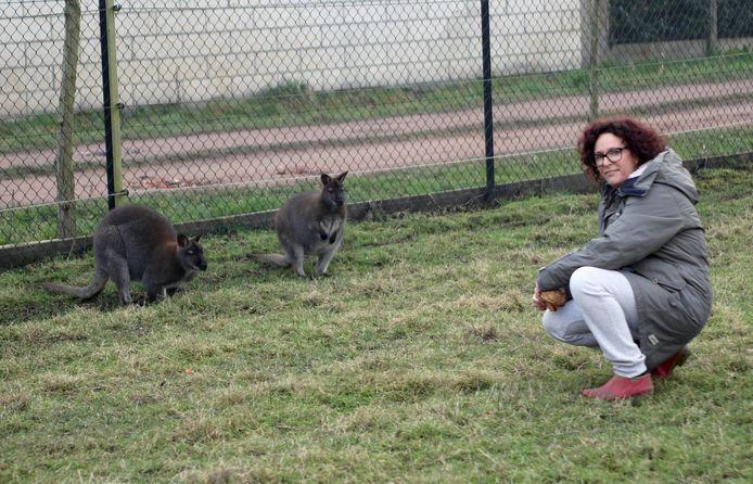 Wendy Gevers met twee van haar andere wallaby's.