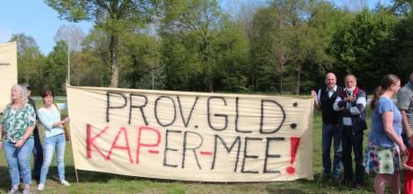 Minister grijpt nog niet in bij geplande bomenkap N319 tussen Groenlo en Ruurlo