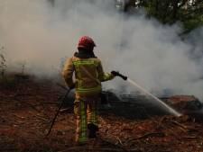 Kwart hectare bos verloren gegaan door brand bij Stiphout