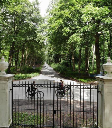 Hoeveel bomen worden er nu écht gekapt in Utrechtse Heuvelrug? De PvdD begint een meldpunt
