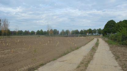 Ninove opent dierenkerkhof op 1 september