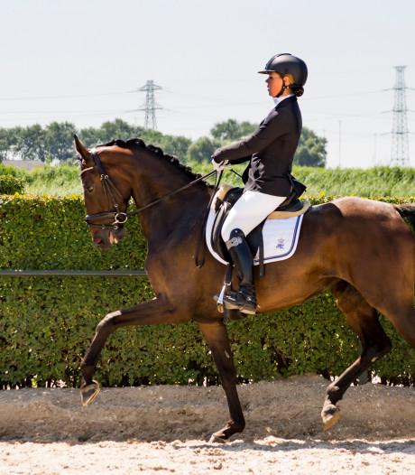 Paard Isa (6) wint prijs na prijs bij Zeeuwse dressuur. Een dag later is ze dood