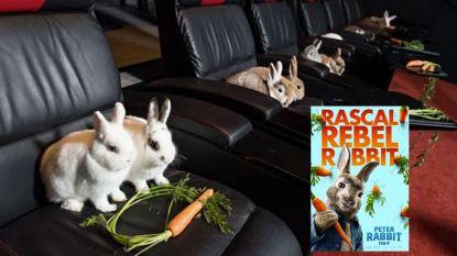 Schattig: bende konijntjes krijgt privé-screening van nieuwe 'Peter Rabbit'-film