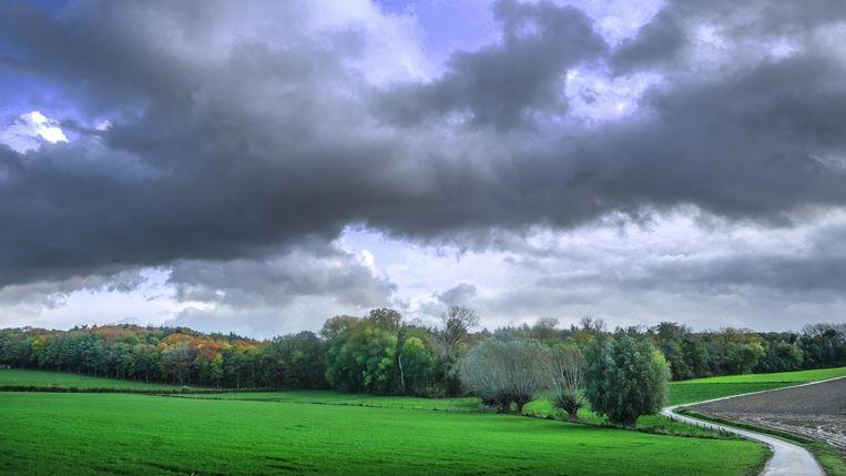 Het Kampagnebos wordt eigendom van Natuur en Bos.