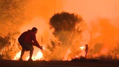 Overal vlammen, maar deze dierenvriend zet wagen aan de kant om konijn te redden uit vuurzee