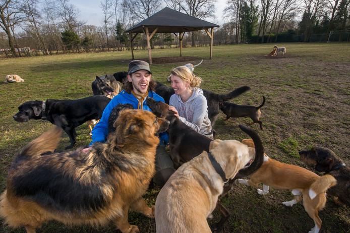 Begin 2018 moest hondenuitlaatservice Happy Time uit Den Bosch het uitlaatveld aan de Pepereind in Cromvoirt verlaten.