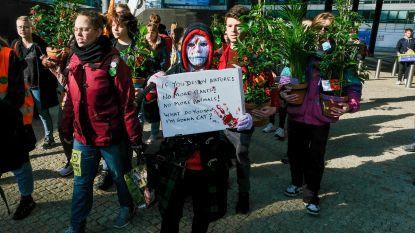 Klimaatjongeren delen planten uit aan Europese politici