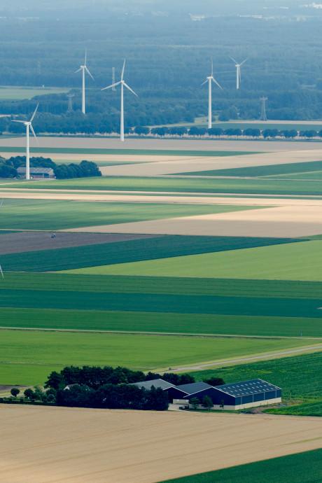 Flevoland blijft koploper met biologische landbouw: 'In beginjaren al aandacht voor'