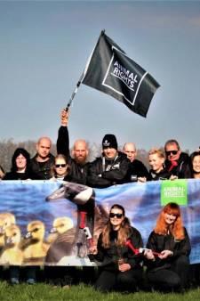 Verjaagde ganzenredders: 'We komen snel terug'