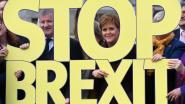 Meerderheid van Schotten wil onafhankelijkheid als brexit plaatsvindt