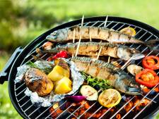 'Stop houtstook en barbecue met houtskool', partijen willen Tilburgs actieplan voor gezondere lucht