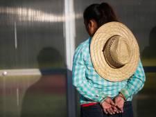 Trump prône la tolérance zéro... et l'immigration illégale augmente