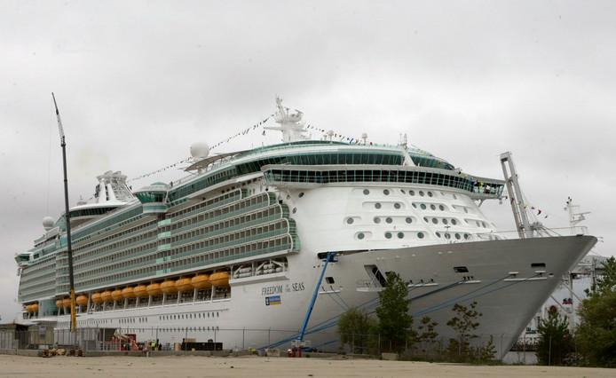 Het cruiseschip in de haven van Puerto Rico.