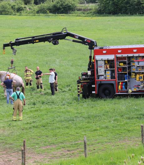 Brandweer rukt uit voor ziek paard in weiland
