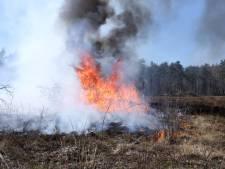 Flink stuk heide brandt af bij Rozendaal