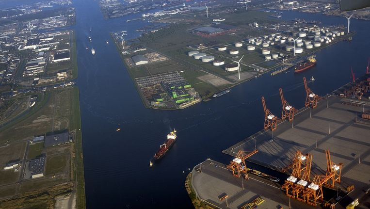 De Amsterdamse Amerikahaven. Beeld anp