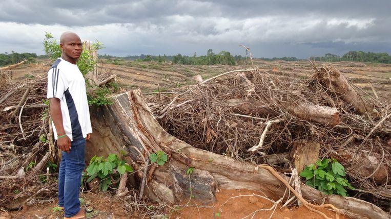 Een bewoner van een Liberiaans palmolieterrein. Beeld Danielle van Oijen