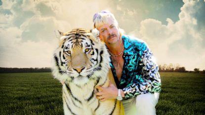 Iedereen heeft het over de serie Tiger King: zo haal je de tijger in jezelf naar boven
