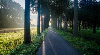 """Puyenbroeck opent woensdag voor wandelaars en fietsers: """"Hou afstand en maak geen gebruik van zit- en picknickbanken"""""""