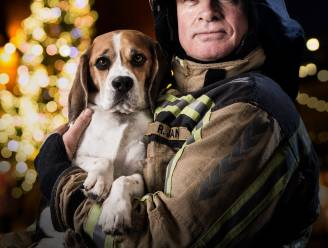 """Brandweer roept op om geen vuurwerk te gebruiken tijdens feestdagen: """"Breng ordehandhaving niet extra in het gedrang"""""""