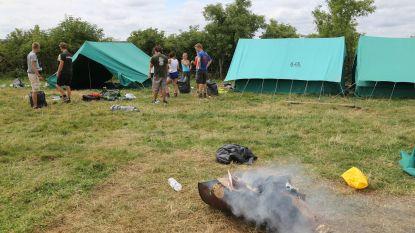 """Geen zomerkampen in zuiden van provincie Luxemburg door Afrikaanse varkenspest: """"We zoeken naar een oplossing"""""""