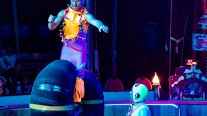 De start van de kerstvakantie, dat betekent theaterpremières