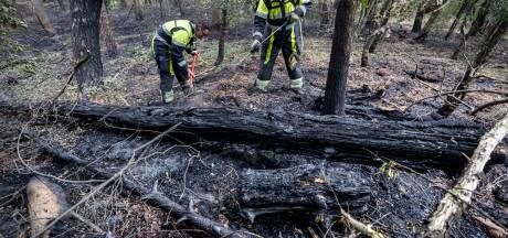 Rookverbod in natuurgebieden Midden-Brabant vanwege aanhoudende droogte