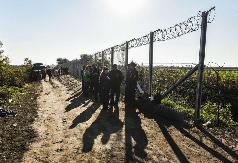 Het hek dat Hongarije bouwt aan de grens met Servië is bijna helemaal af. Beeld afp