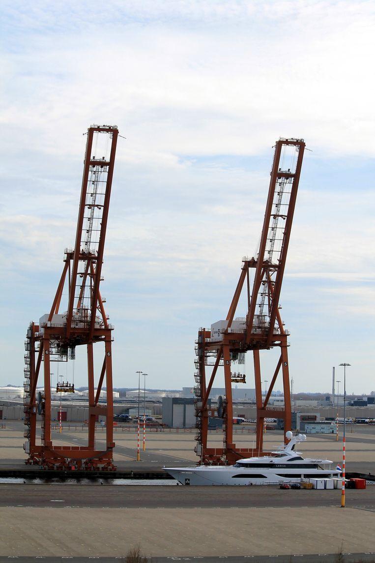 Twee van de vijf overgebleven havenkranen Beeld Herman Stil