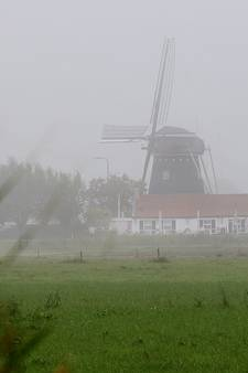 Moord in de Brabantse polder: Gewetenloze minnares of liefhebbende moeder