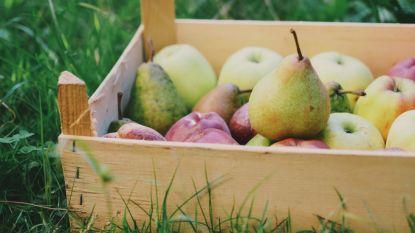 Los jij onze maandagpuzzel op? Appelen en peren