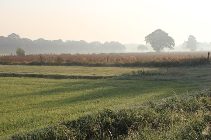 Het gebied op de grens van de Needse buurtschap Hoonte, Eibergen en Haarlo waar het zonnepark gepland is.