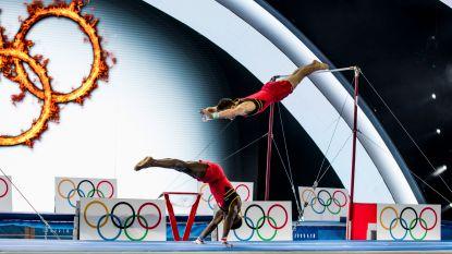 Belgium's Got Talent voor stuntwerk