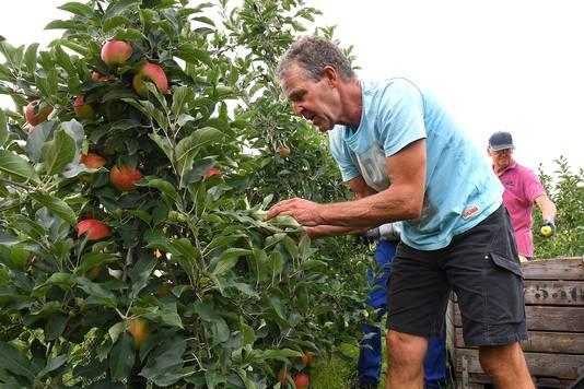 Fruitteler Christan Stevens.