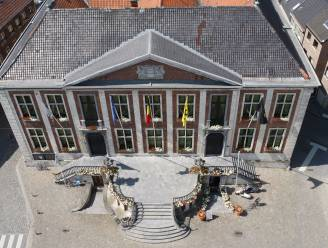 Diest wil ruim drie vierde van haar woningen aangesloten krijgen op zuiveringsinstallaties