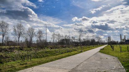 Stad gaat voor meer en nieuwe bebossing in Dendermonde