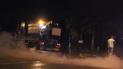 Dierlijk vet op de weg veroorzaakt zware verkeershinder