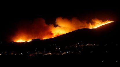 Al 19 gewonden bij zware bosbrand in buurt van Lissabon