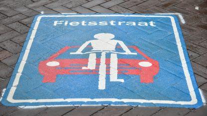 Nog steeds heel wat overtredingen in Pylyserlaan: elk halfuur toch zes fietsers ingehaald