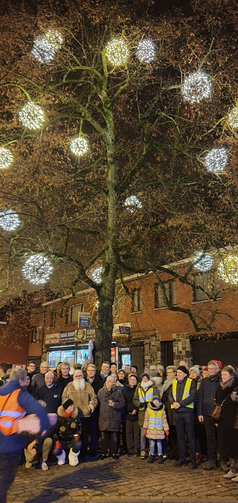 De Vredesboom in Meer kreeg dit jaar al sfeervolle verlichting.