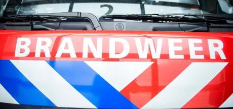Brandweer haalt vrouw met kat uit brandende woning in Schiedam