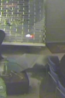 Ramkrakers stalen eerst auto in Tilburg en reden toen brillenzaak in Oisterwijk binnen