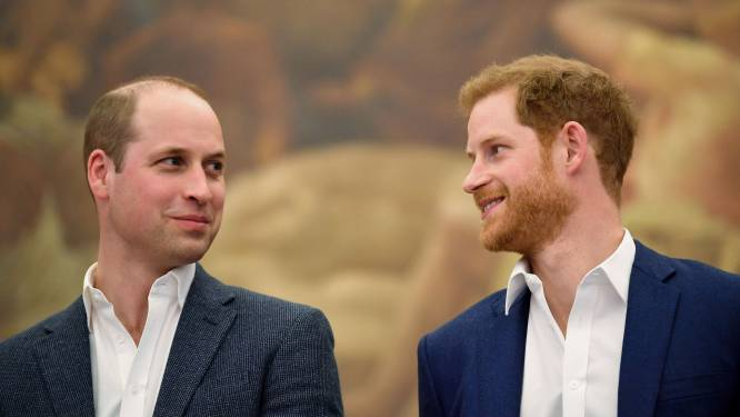 """""""Britse media proberen wig te drijven tussen Harry en William"""""""