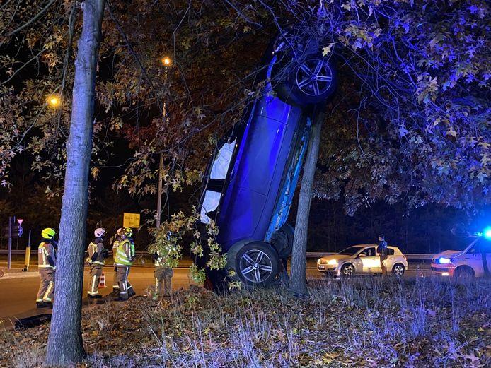 De bestuurder reed op de rotonde rechtdoor en parkeerde zijn wagen verticaal tegen een boom