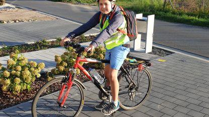 11-jarige Tias stuurt tweet naar minister Weyts (N-VA) om timer verkeerslichten R4-Oost aan te passen
