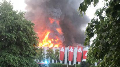 Grote industriebrand zet loods Katoen Natie in lichterlaaie: brandweer waarschuwt voor glasdeeltjes in tuin