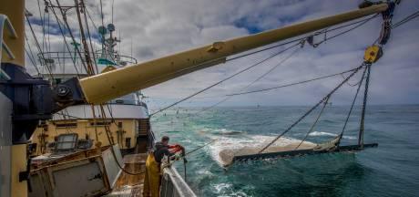 'Vissersbond en VisNed dienen alleen grootschalige visserij'
