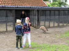 Rudi wilde geen bloemen op zijn begrafenis, in plaats daarvan schonk hij Borne een kleine kangoeroe