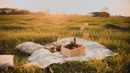 Zomers picknicken in De Mandelmeersen