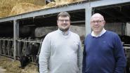 """Na jaren zwoegen opent veeboer hoevewinkel met Belgisch Wagyuvlees: """"Het enige 100% raszuivere in België"""""""